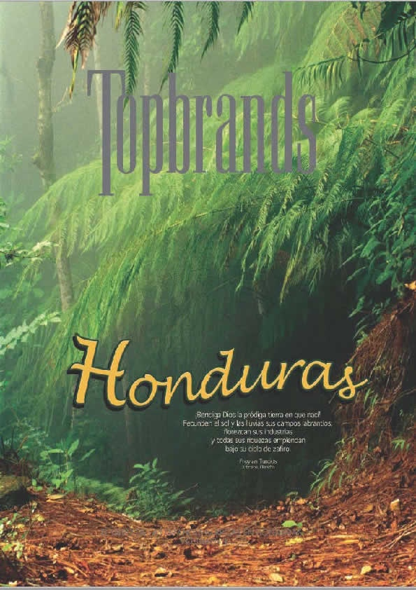 "<strong><span style=""color: #000;font-size:14px;text-align:center;margin-top:5px;"">Honduras Volume 1</span></strong>"